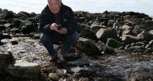 Prof Mike Williams, geologist wtih NUI Galway Earth and Ocean Sciences, recording data on the  remains of an oak trackway, estimated to be between 3,700  years old, on the shoreline near Furbo. The trackway was uncovered by last winter's storms. Photograph: Joe O'Shaughnessy