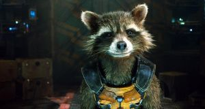 Rocket Raccoon (Bradley Cooper) in Guardians of the Galaxy. Yes, he's a raccoon