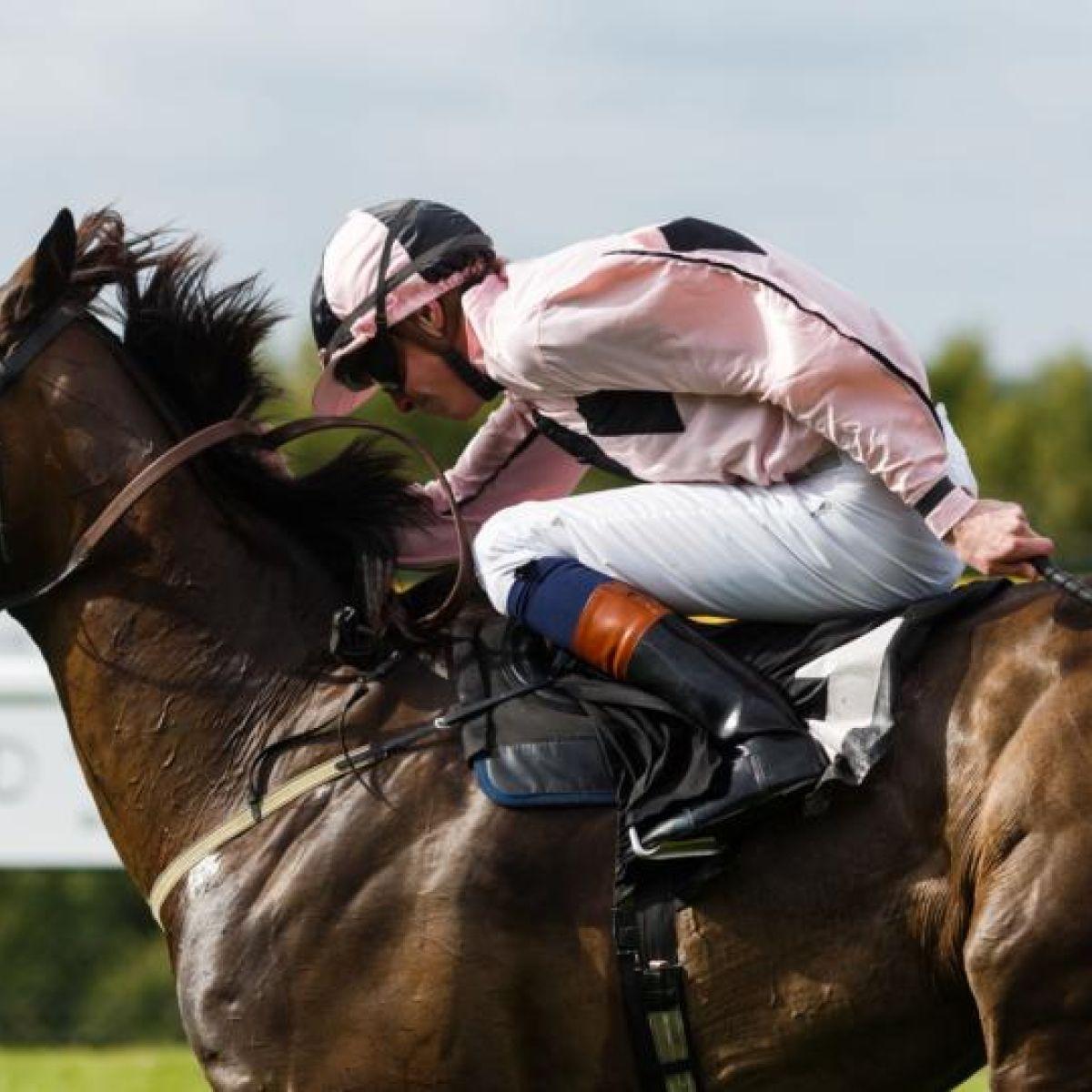 Owner Data - Horse Racing Ireland