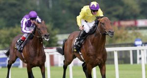 Sea The Stars wins the 2009 running of  the Irish Champion Stakes at Leopardstown.
