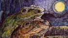 Keystone: frogs' offspring play a key role in the food chain. Illustration: Michael Viney