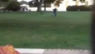 Man jumps White House fence and runs to door