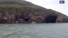 Dunmore East RNLI rescues stranded cow from base of cliff