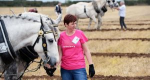 Caroline Lardner from Galway, competing in the under-40 horse ploughing at the National Ploughing Championships at Ratheniska, Co Laois. Photograph: Eric Luke/The Irish Times