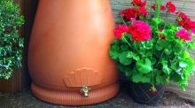 With the impending water charges, this year might have been the last time to enjoy such a flamboyant abundance of colour in the garden. To ensure beloved blooms are sustained, why not install a water butt