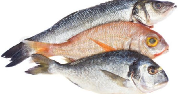 Super nutritious foods high in selenium for Best type of fish to eat