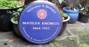 The new plaque at the National Botanic Gardens honouring the life and work of Matilda Knowles