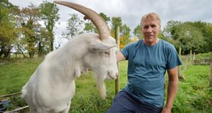 Declan Bowens, who runs the Back into Daylight sanctuary in Co Meath, and Louis the goat. Photograph: Alan Betson