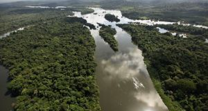 According to the company's website, Celestial Green specialises in the development of natural capital conservation projects involving the creation of credits associated with reduced deforestation in the Amazon basin. Photograph: Getty Images