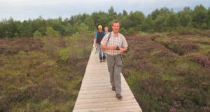 Go walk: Abbeyleix Bog Loop, Co Laois