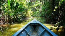 Traveldesk: cruising the Amazon and a gin palace