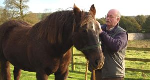 """Care, company and community"": Peter Fallon, with Moses Hill, in Loughcrew. Photograph: Suella Holland/The Gallery Press. Photograph: Suella Holland/Gallery Press"