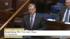 Enda Kenny under fire in the Dáil during Leaders' Questions.