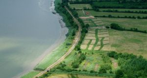 Settlement: the Viking base; the lines of new grass mark test trenches. photographs: Studio Lab/NRA