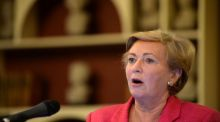It is understood Minister for Justice and Equality, Frances Fitzgerald is keen for the review to assess whether any lessons can be drawn from similar measures in Australia and Britain. Photograph: Dara Mac Donaill