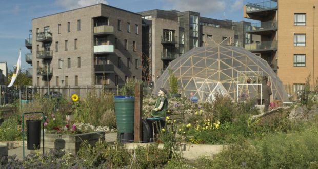 Flanagans fields: an inner city garden with heart and history