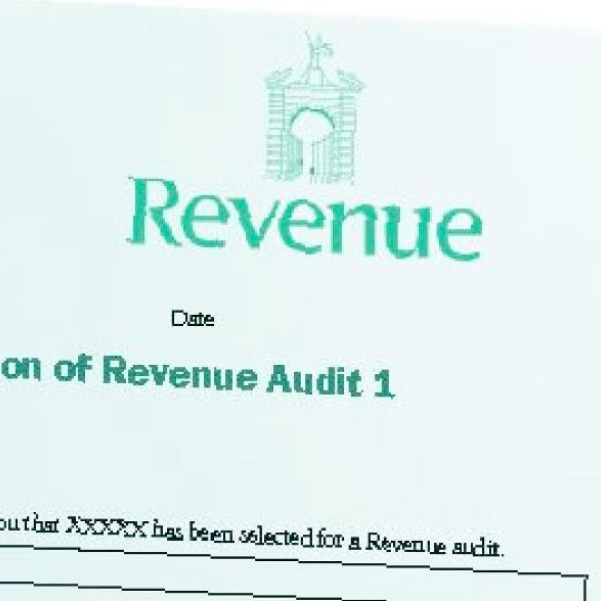 How to cope with an official audit by the Revenue