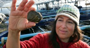 Cindy O'Brien with a market size abalone at the Connemara Abalone Farm in Rossaveal. Photograph: Joe O'Shaughnessy