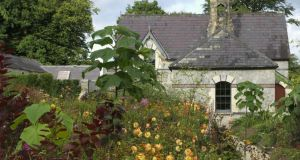 June Blake's exciting, contemporary garden in County Wicklow. Photographs: Richard  Johnston
