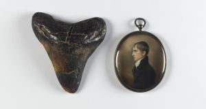 Fossil shark tooth Carcharodon megalodon, USA Natural History Collection/National Museum of Ireland and John Comerford Robert Emmet (1778-1803), c.1803. Watercolour on ivory in a silver-gilt pendant. National Gallery of Ireland Collection
