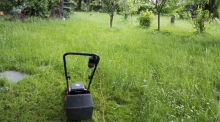 Many landlords will leave a lawnmower in the garden shed and the tenant then takes on the responsibility of cutting the grass