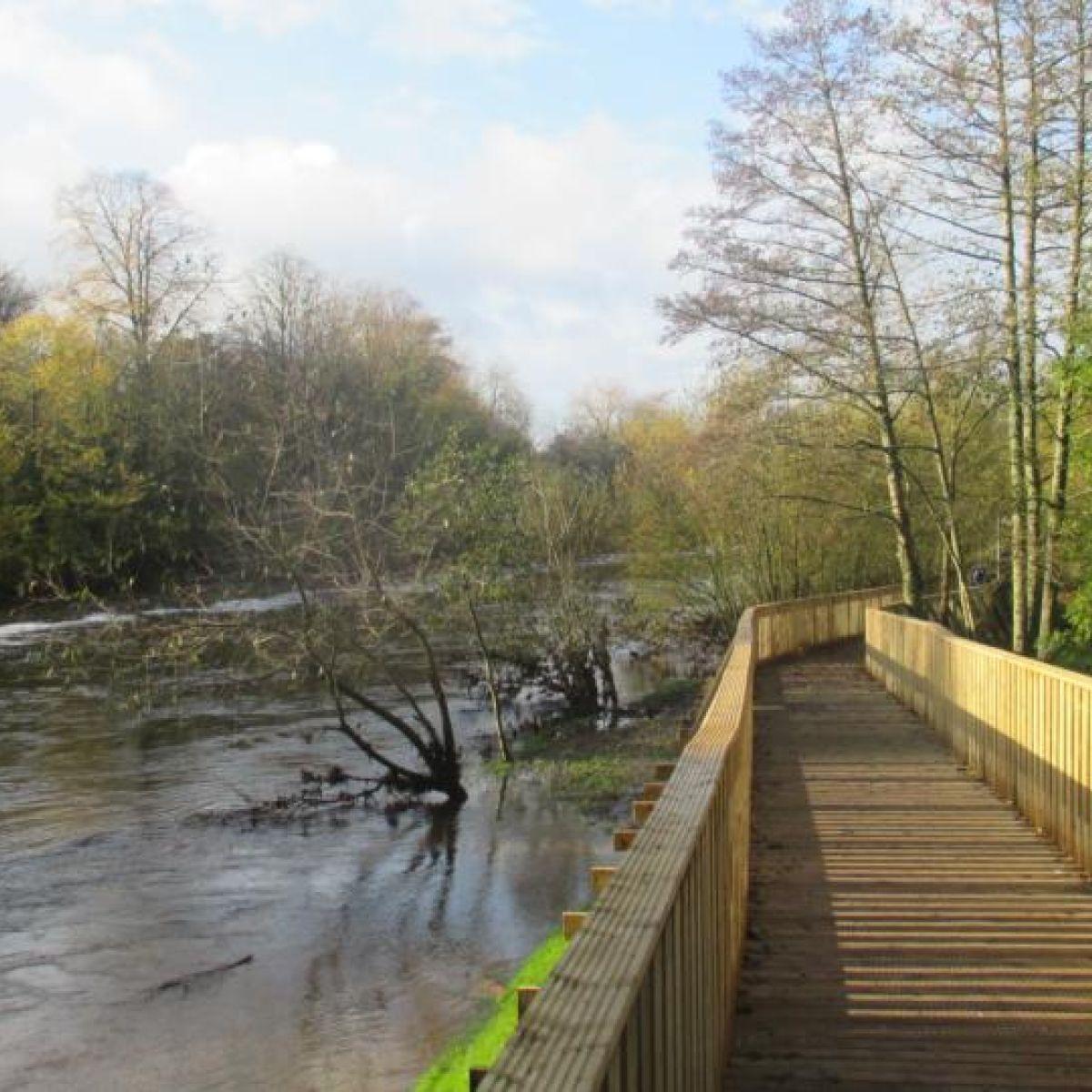 Nore Valley Walk (Kilkenny to Bennettsbridge section