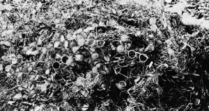Auschwitz: victims' glasses at the concentration camp. Photograph: LAPI/Roger Viollet/Getty Images