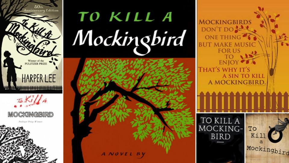 """The Quotes about Racism in """"To kill a Mockingbird"""""""