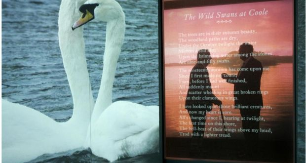 to a waterfowl poem analysis