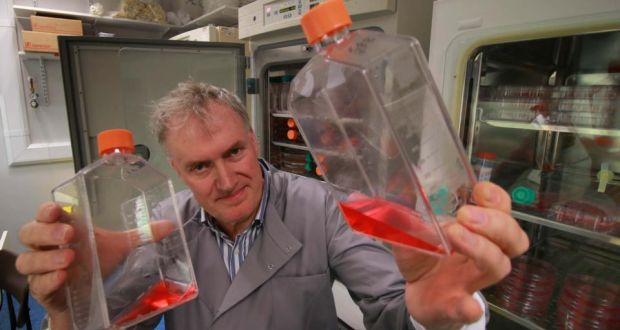 Prof Luke O'Neill with flasks of inflamed white blood cells from the immune system in a laboratory in Trinity. Photograph: Nick Bradshaw