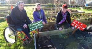 Róisín Devoy (centre), community food initiative co-ordinator, with Alfie Palmer and Breda Hanaphy, at the community garden at Corduff , Blanchardstown.  Photograph: Eric Luke