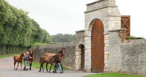 Ballylinch Stud, in Thomastown, Co Kilkenny: another of  Malone's  Irish acquisitions