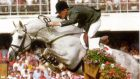 Cruising: won many Grand Prix show-jumping competitions
