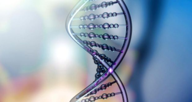 Creating IVF babies with DNA of three people legalised in UK