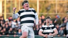 Jack Clarke of Belvedere College celebrates at the end of the game. Photograph: Morgan Treacy/Inpho.