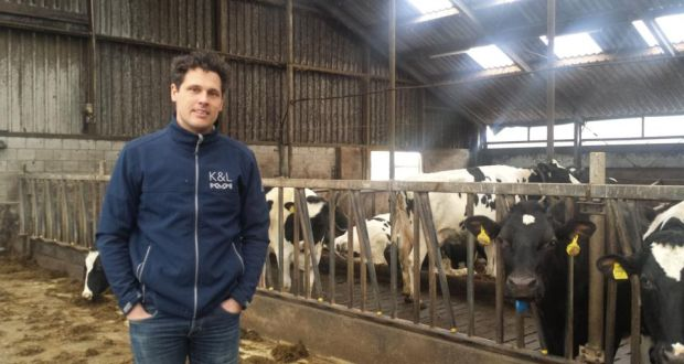 dutch dairy farmers gearing up for post quota reality