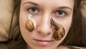 Snail facials: you can't get fresher that that. Photograph: Thinkstock