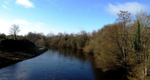 Go Walk: A riverside meander through Newcastle Woods, Co Longford
