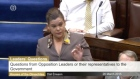 During a heated exchange in the Dáil Mary Lou McDonald TD has referred to the Tánaiste Joan Burton as a 'wimp'.
