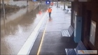 Timelapse video shows Sydney train track transform into stream