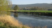Go Walk: A ramble along the Suir Valley river, Co Tipperary