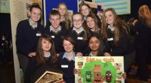 Behind the News: Scoil Chonglais bug hoteliers