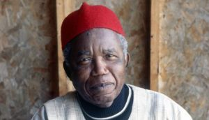 Chinua Achebe: balances the richness of African folklore and native speech with the sterile politicking inherited from outsiders, who ruled, influenced, then left, leaving their mess behind. Photograph: Jerry Bauer