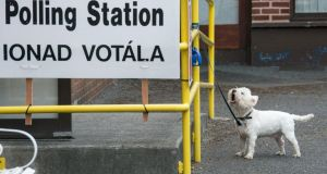 A dog waiting outside a polling station on Friday while his owner casts his vote. Photograph: Dave Meehan