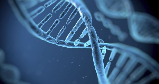 DNA imaged with electron microscope for the first time | New Scientist
