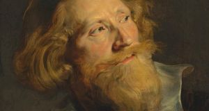 A detail from Portrait of a Bearded Man by Peter Paul Rubens.