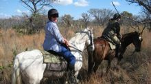 Travel writer, South Africa: Swimming with hippos and other adventures from the veld