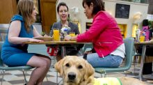 Behind The News: Léan Kennedy, Irish Guide Dogs