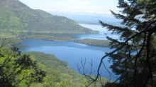 A walk for the weekend: Killarney National Park