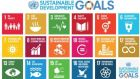 Sustainable Development Goals will replace the Millennium Development Goals.